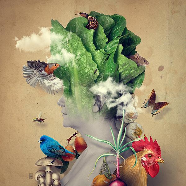 Bộ 14 ảnh minh họa của Andrea Costantini
