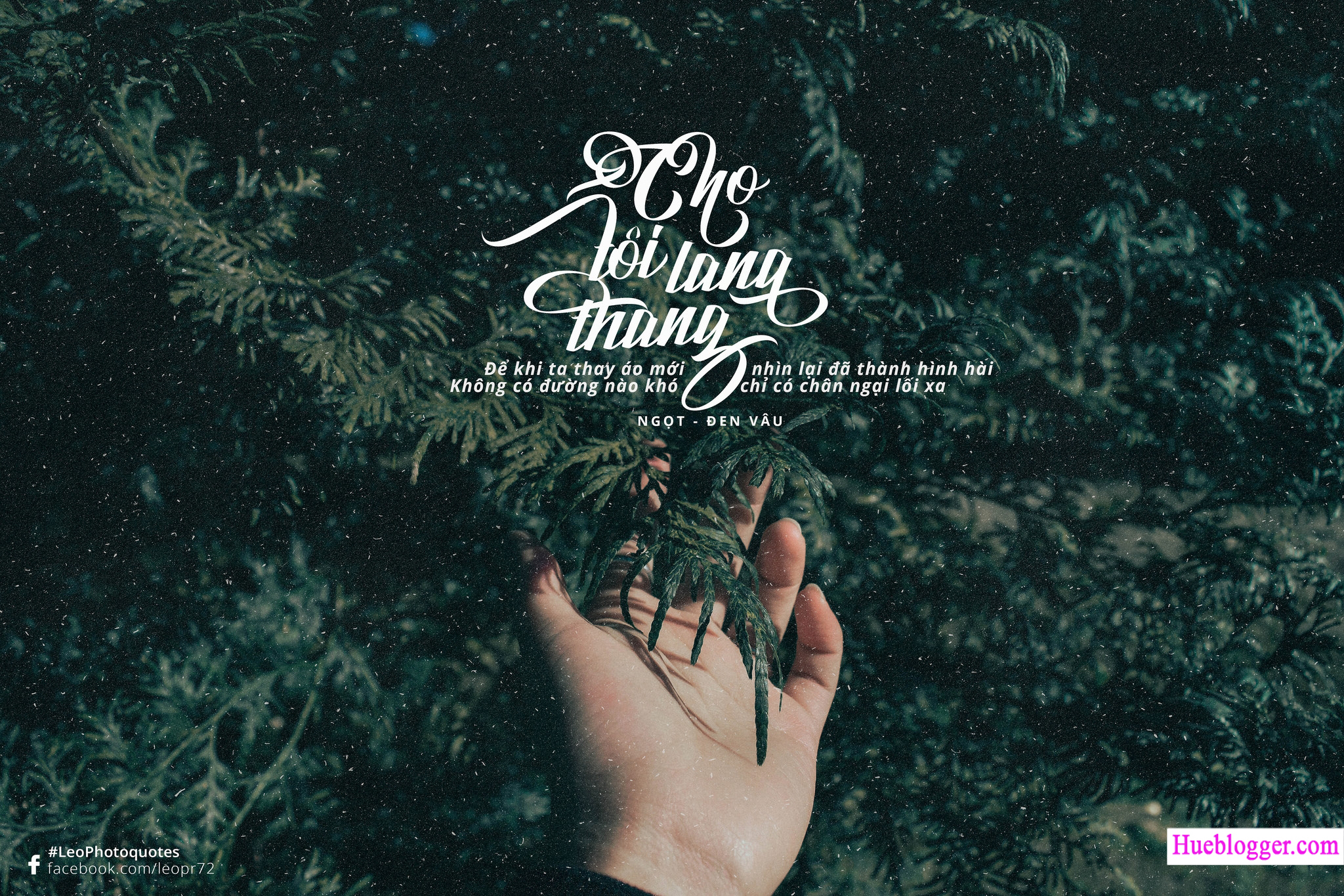 PSD Photo Quotes kèm Typography