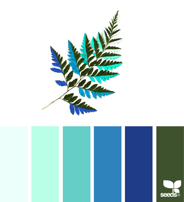 Bảng màu cho designer