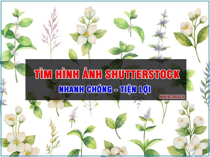 Tìm hình ảnh Shutterstock nhanh nhất